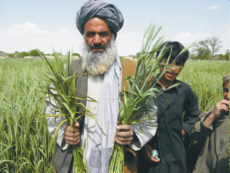 AG Balochistan Agriculture 2