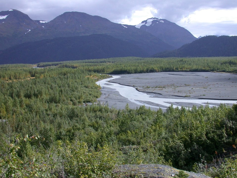 Moose Pass area between Seward and Anchorage.