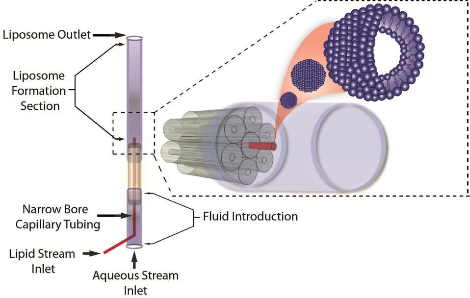 3D-microfluidic Hydrodynamic Focusing Device