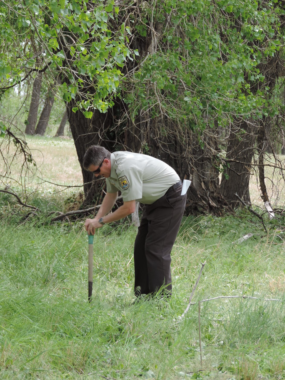Project Leader David Lucas Planting Cottonwood Trees