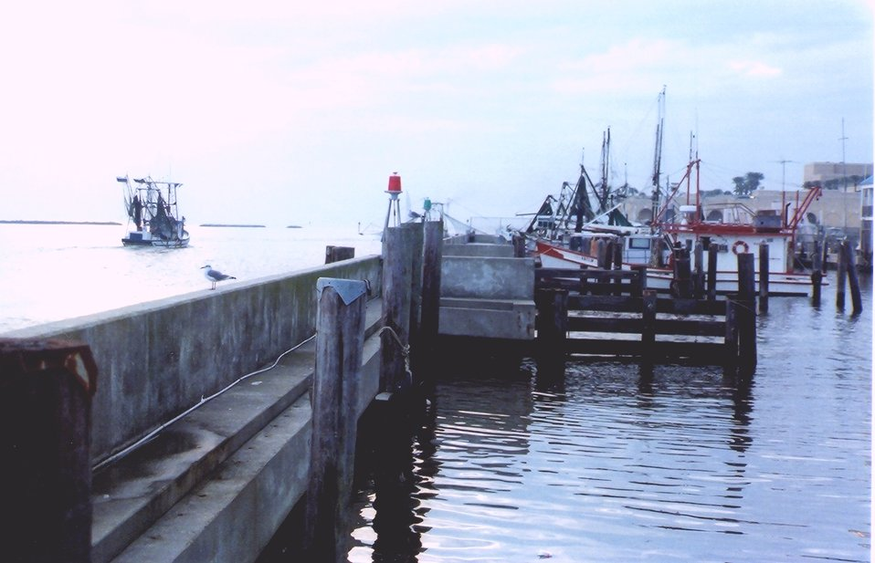 Shrimp boat docks.