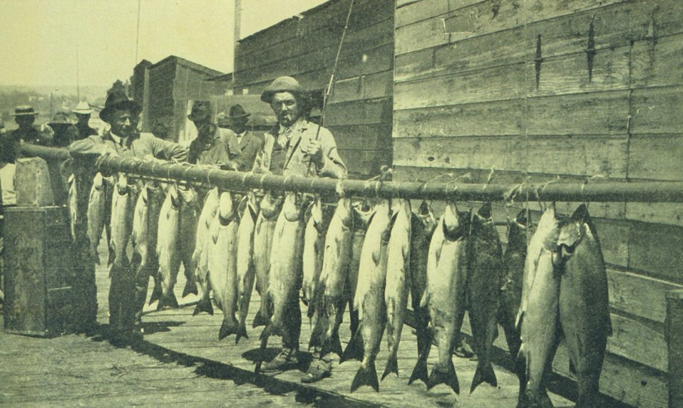 Salmon catch with rod and reel at Santa Cruz. In: 'The City of Santa Cruz and VicinityCalifornia.' Published by The Santa Cruz  Board of Trade.  1905.