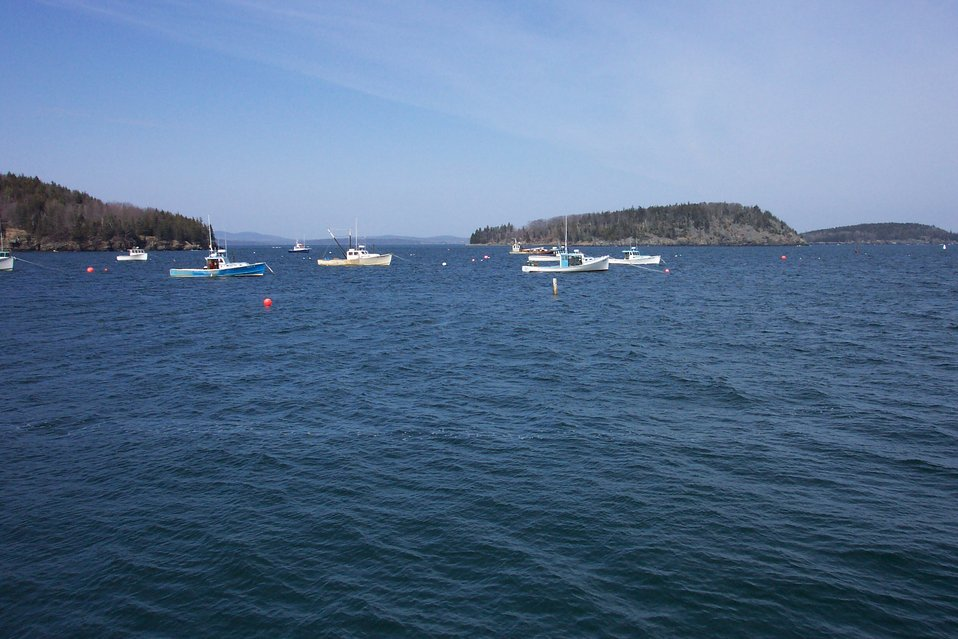 The harbor at Bar Harbor.