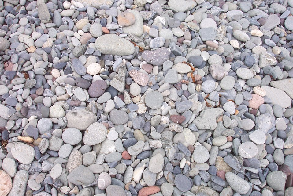 Multi-colored rocks on the cobble beach at West Quoddy Head.