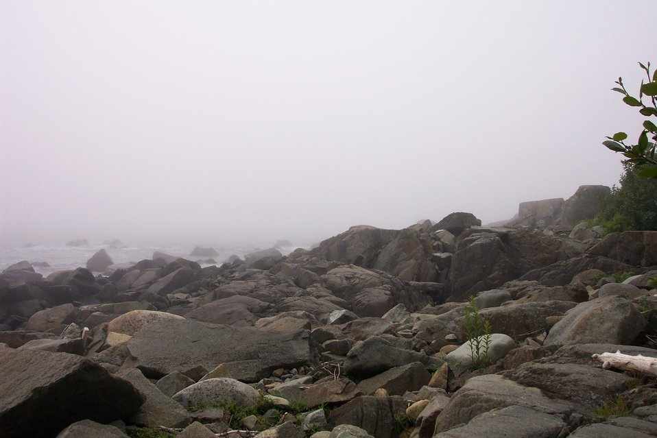 Part of a foggy rocky shoreline at West Quoddy Head.