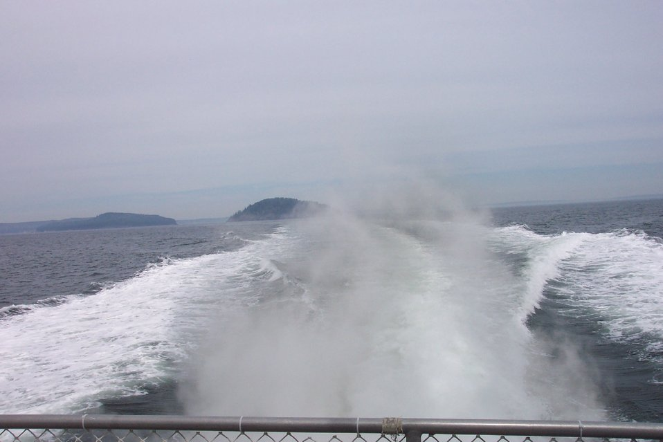 Leaving Bar Harbor behind on a whale-watching cruise to the Gulf of Maine.