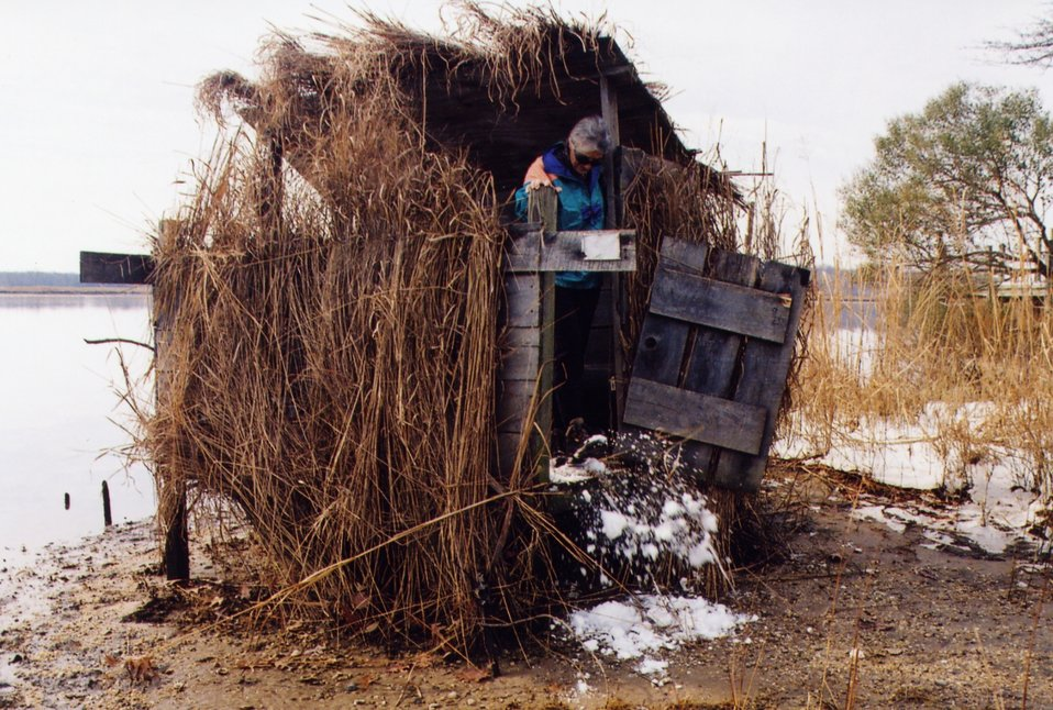 Patuxent River duck blind.