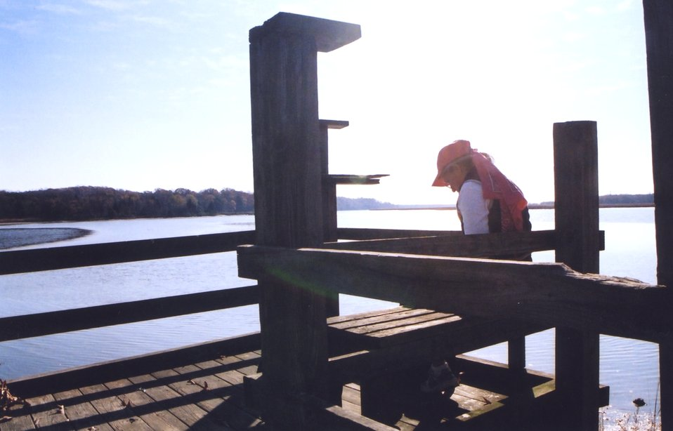 Catching a quiet moment on a warm fall afternoon at a public park fishing pier.