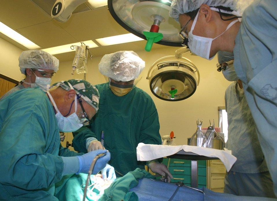 Course prepares dentists to treat children worldwide