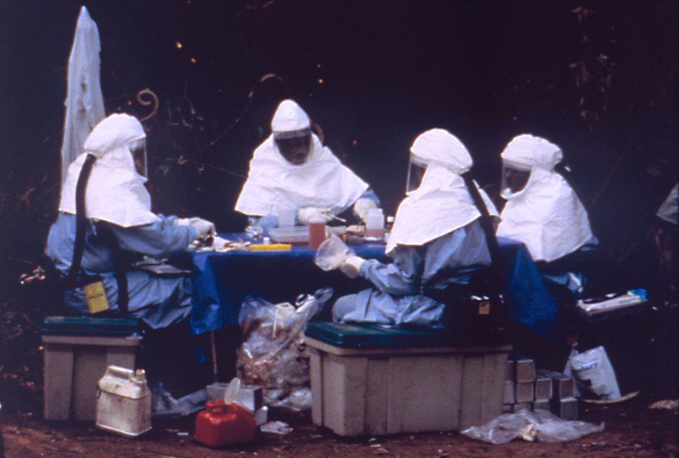 bubonic plague vs smallpox essay
