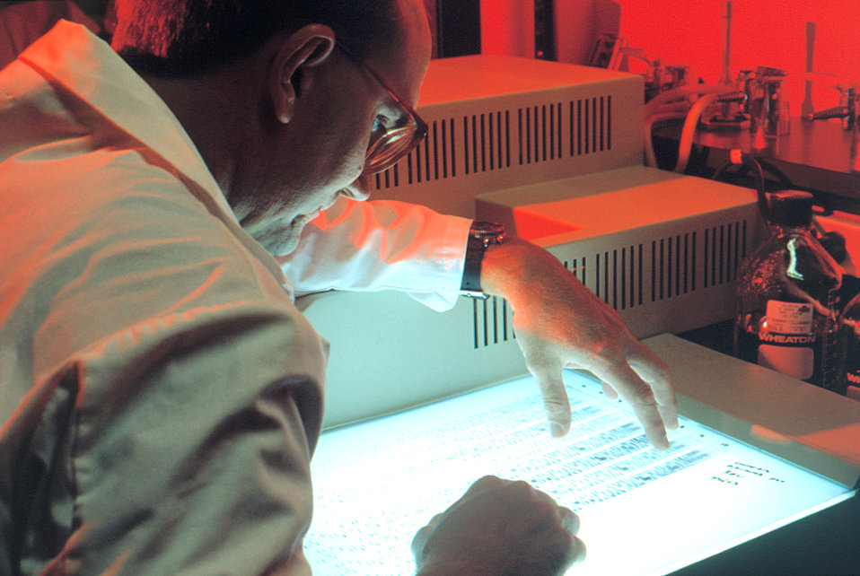 Laboratory worker reviewing DNA band pattern.