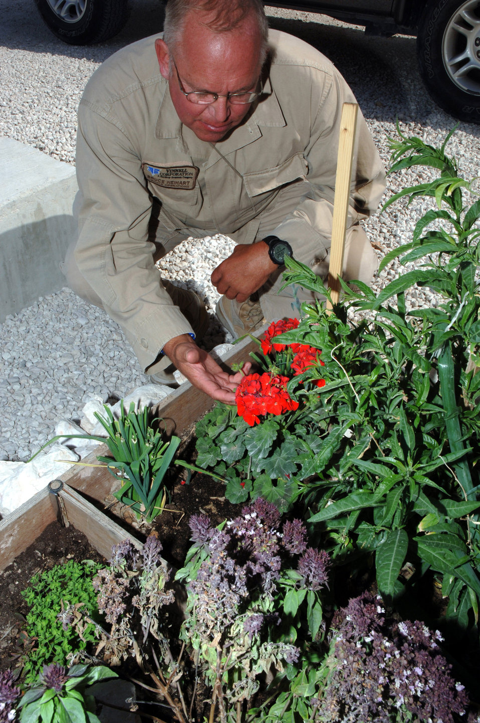 Garden in the desert