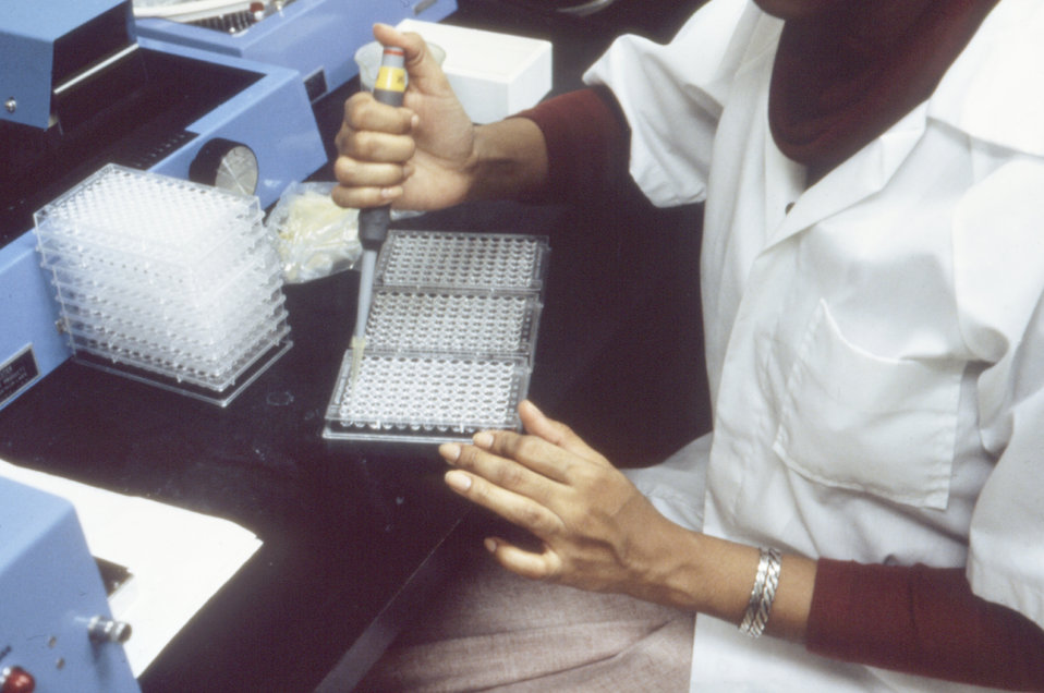 This lab tech is dispensing sera into microtiter plates to test for the presence of L. pneumophilia antibodies.