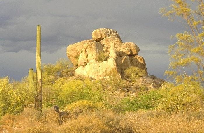 Desert scene at The Boulders, Carefree, Arizona.
