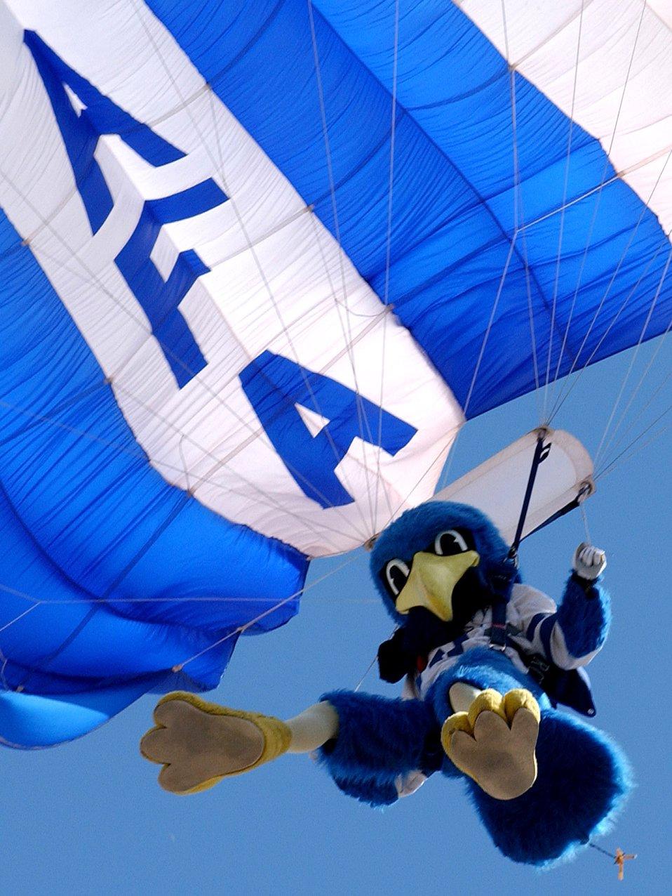 Falcon mascot competes again