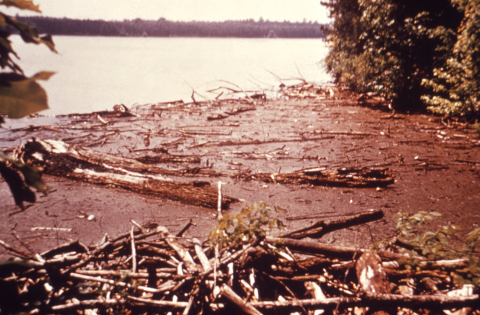 This 1976 photograph shows logs and debris at the edge of a reservoir at an unknown location in the United States.