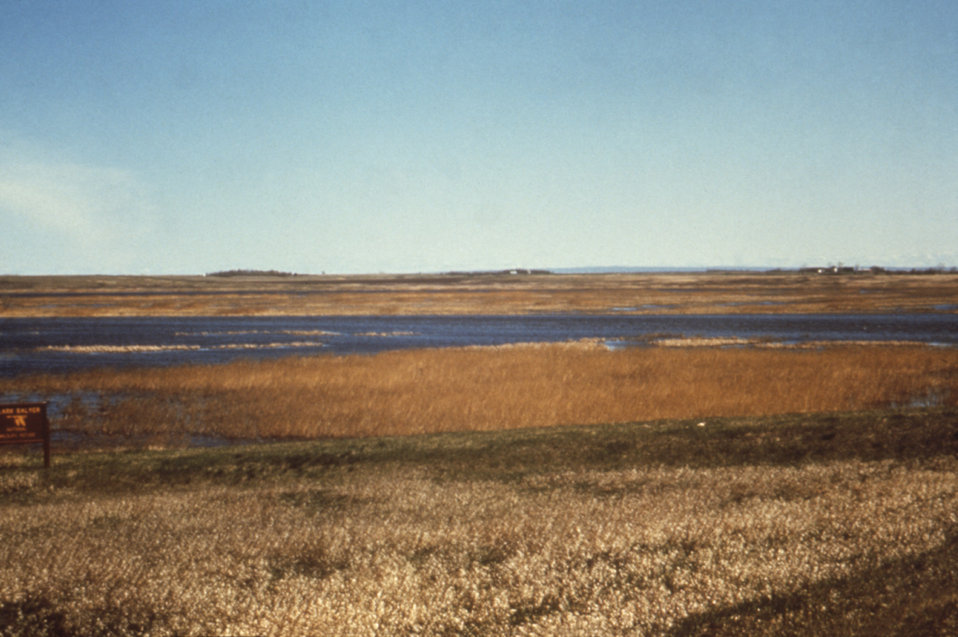This 1976 photograph depicts the J. Clark Salyer National Wildlife Refuge off the Souris River in North Dakota.