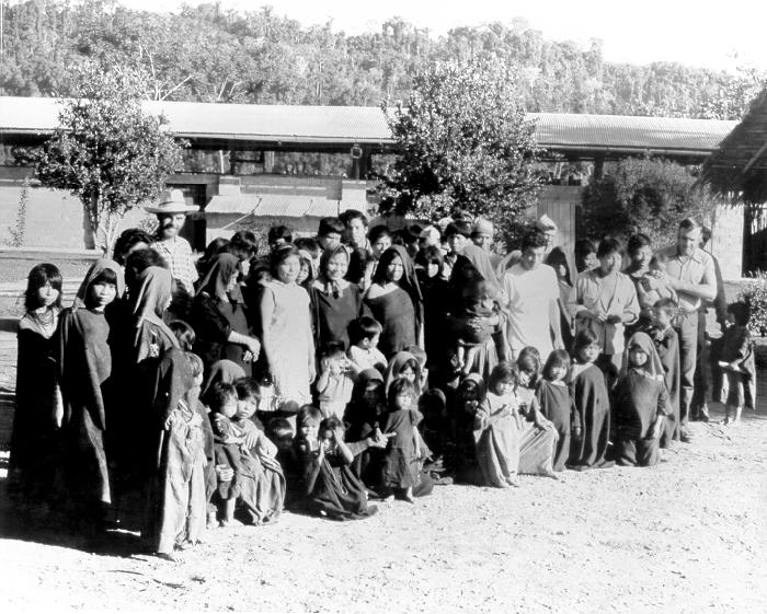 This was a group of Campas, a former wanderer tribe, who were being investigated at the time for hyperendemic malaria.