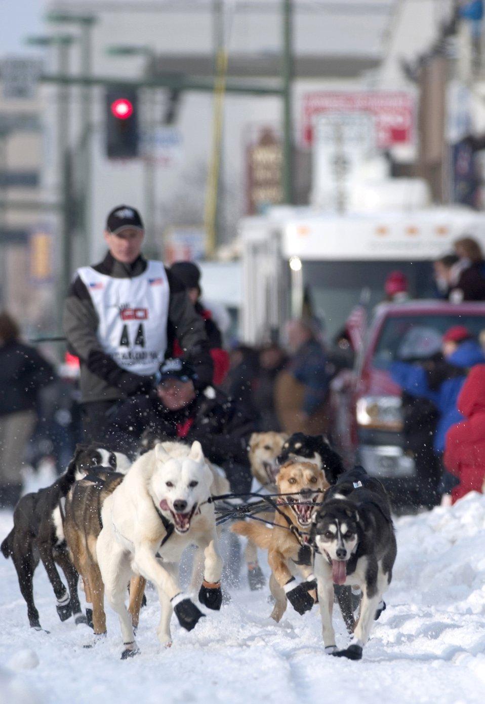 2006 Iditarod