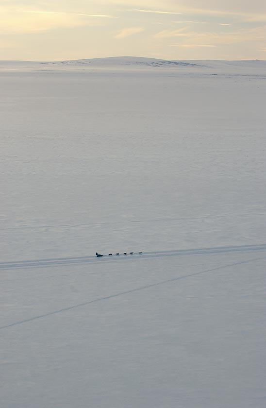 Elmendorf Airman finishes Iditarod