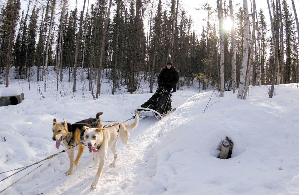 Medicine man trains for sled-dog race