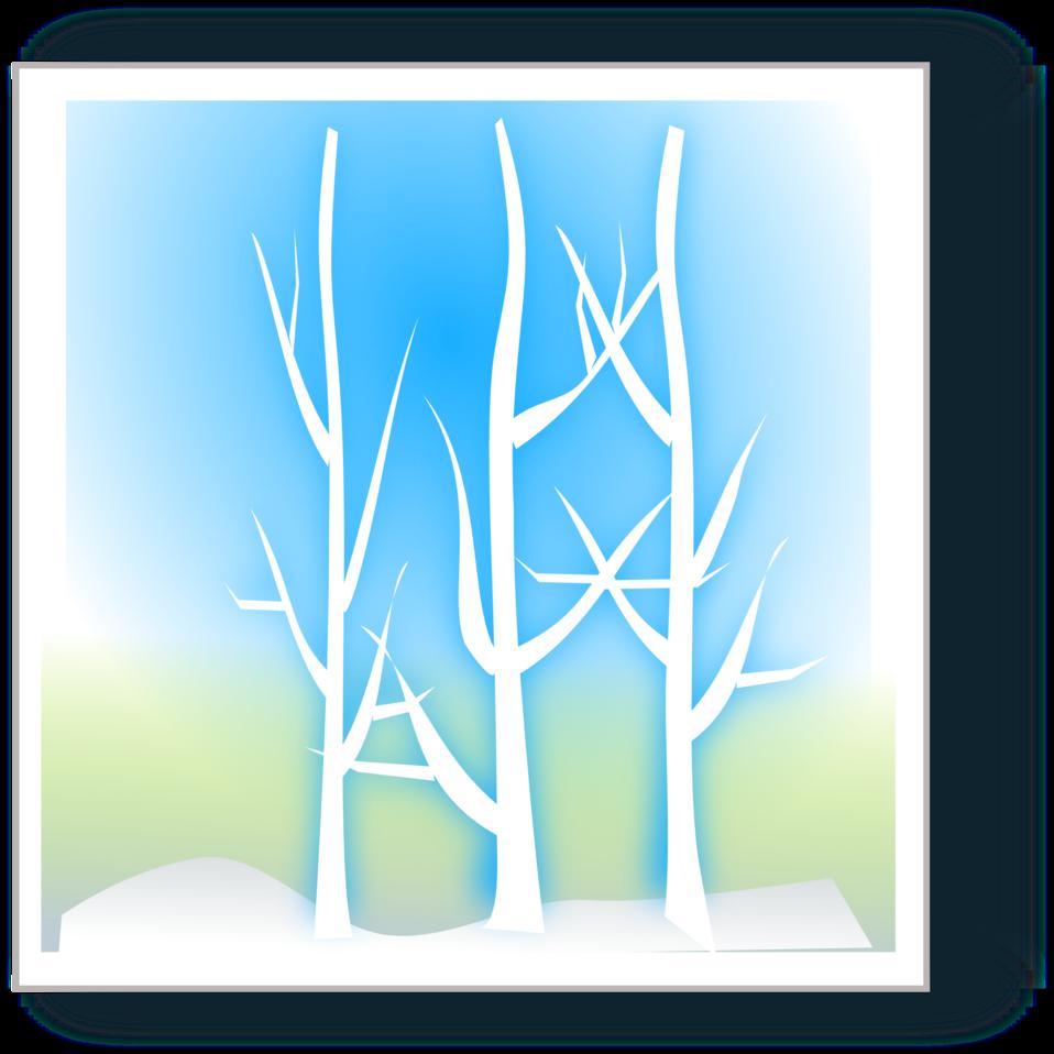winter silhoutte
