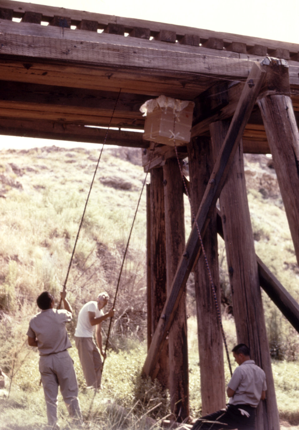 This photograph depicts a bat collection process underway beneath a railroad bridge during a 1974 arbovirus study.