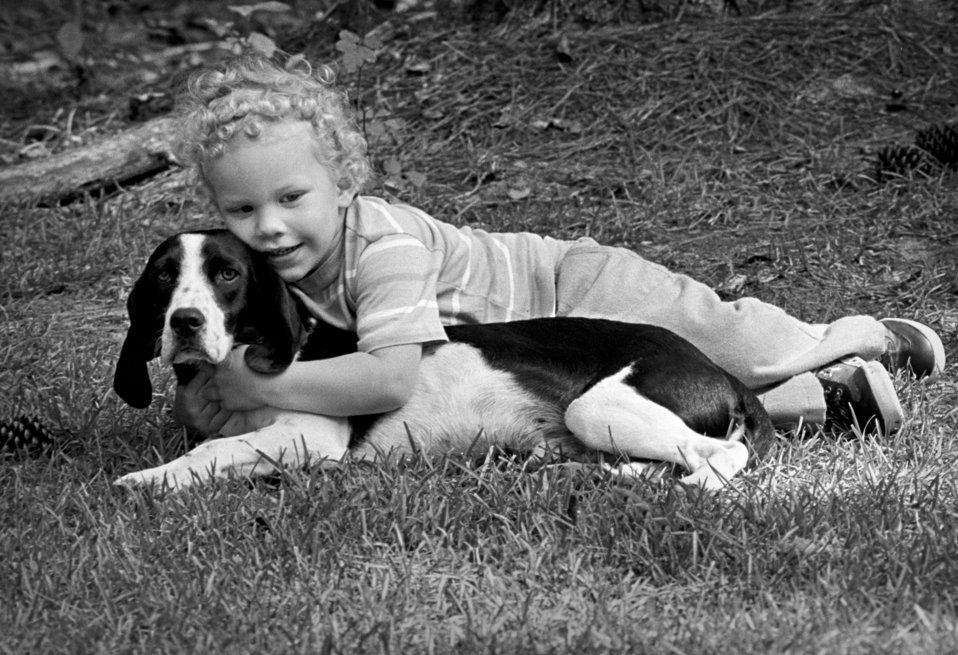 This photograph depicts a beagle dog named Barney that was enjoying the hugs of a small child while both were lying on the lawn. Note the do