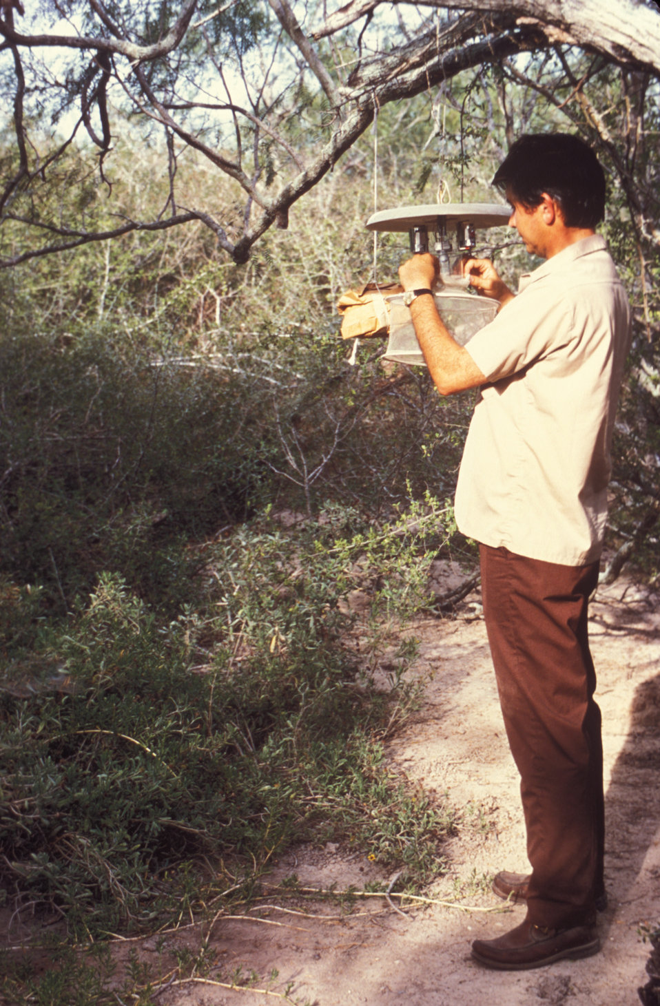 This technician is setting up a CDC light trap used to collect mosquitoes in the field.