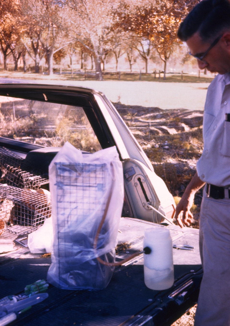 Here a field clinician is adding CO2 to anesthetize an animal during a 1974 arbovirus field study.