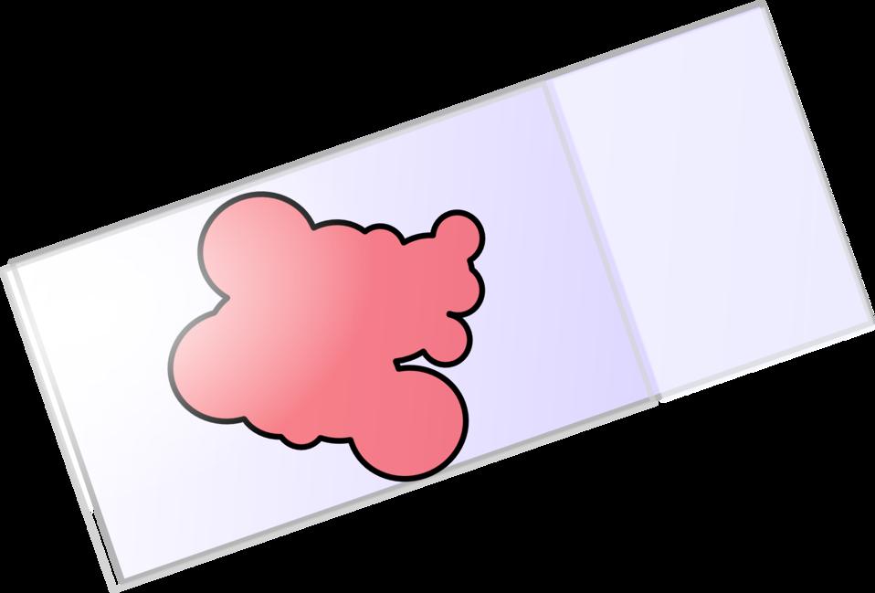 Coverslipped Slides