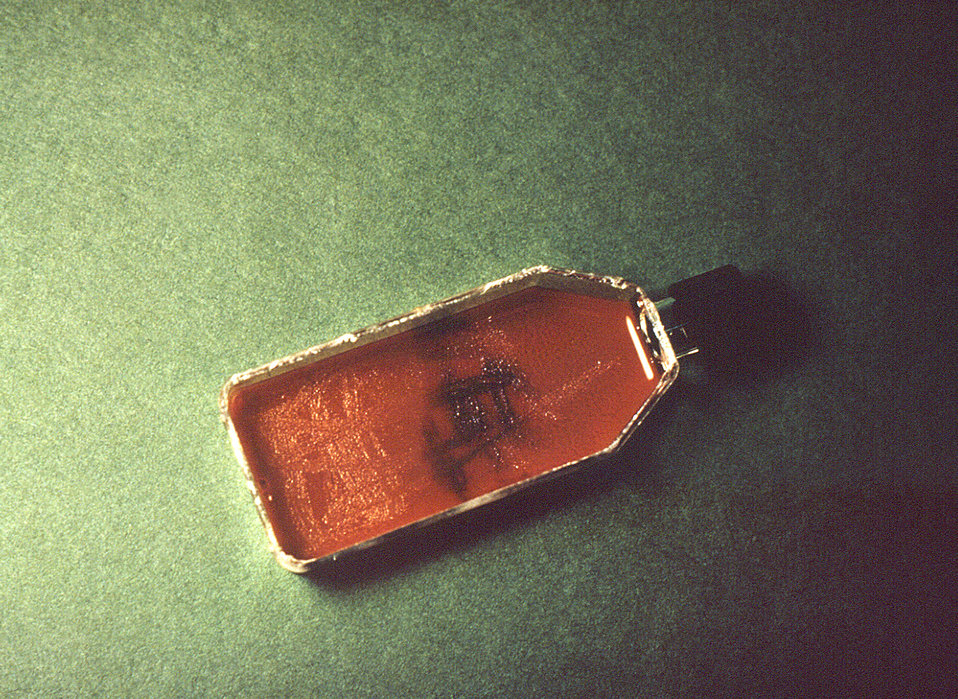 This is a flask containing 'Transgrow' medium used to transport an N. gonorrhoeae specimen to a laboratory for testing.