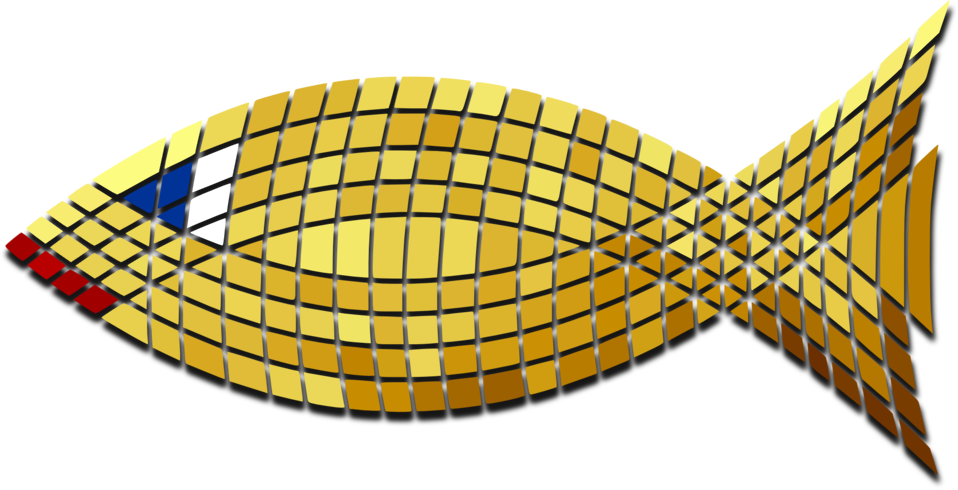 Tiled Gold Fish