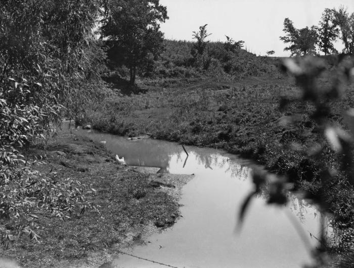This historic 1936 photograph depicted Sucker Creek at the location of its first bridge, above Minnesota's Cokato Lake. Its purpose was to s
