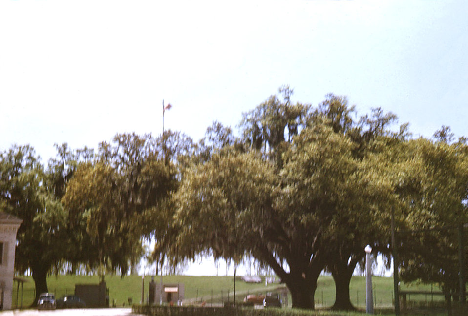 This was a view just inside the gate of the Carville, Louisiana Leprosarium, where a traffic circle and watchman's booth were visible. Off t