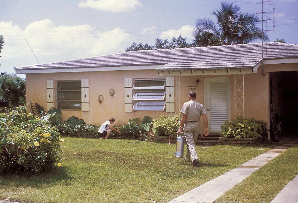 This photograph was taken during the 1965 Aedes Aegypti eradication program in Miami, Florida.