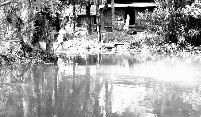 This photograph depicted a Bangladesh village situated on the banks of a river, which made it accessible to both river and land transport. M
