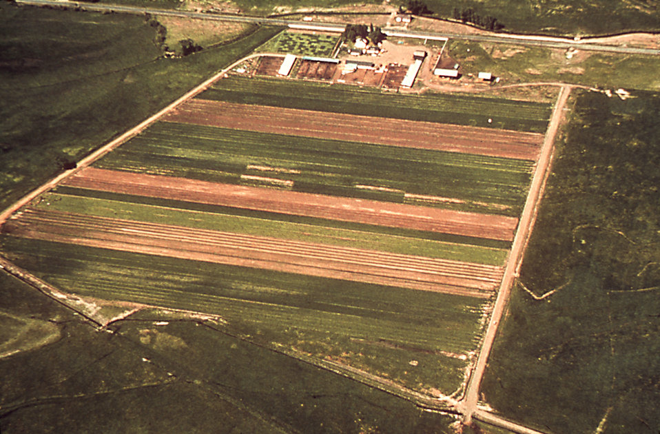 This aerial view of an irrigated farm depicts yet another environment that potentially could act as a mosquito breeding ground.