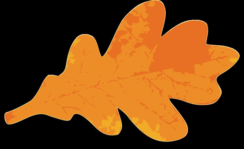 M Leaf 03