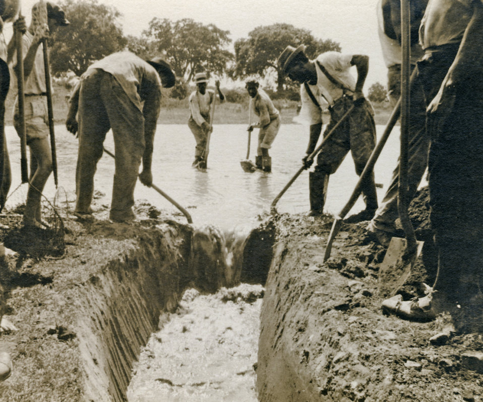 This 1920s photograph, taken somewhere in the southern United States, showed workers practicing 'vector control' by digging a drainage ditch