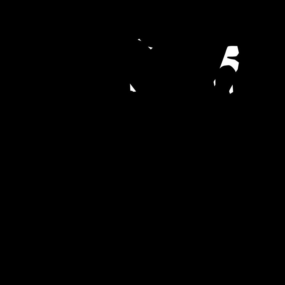 Netball silhouette