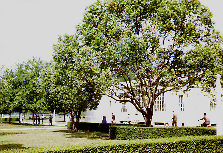 Shot on the grounds of the historic Carville, Louisiana Leprosarium, this scene was captured at a point where the walkway between the hospit
