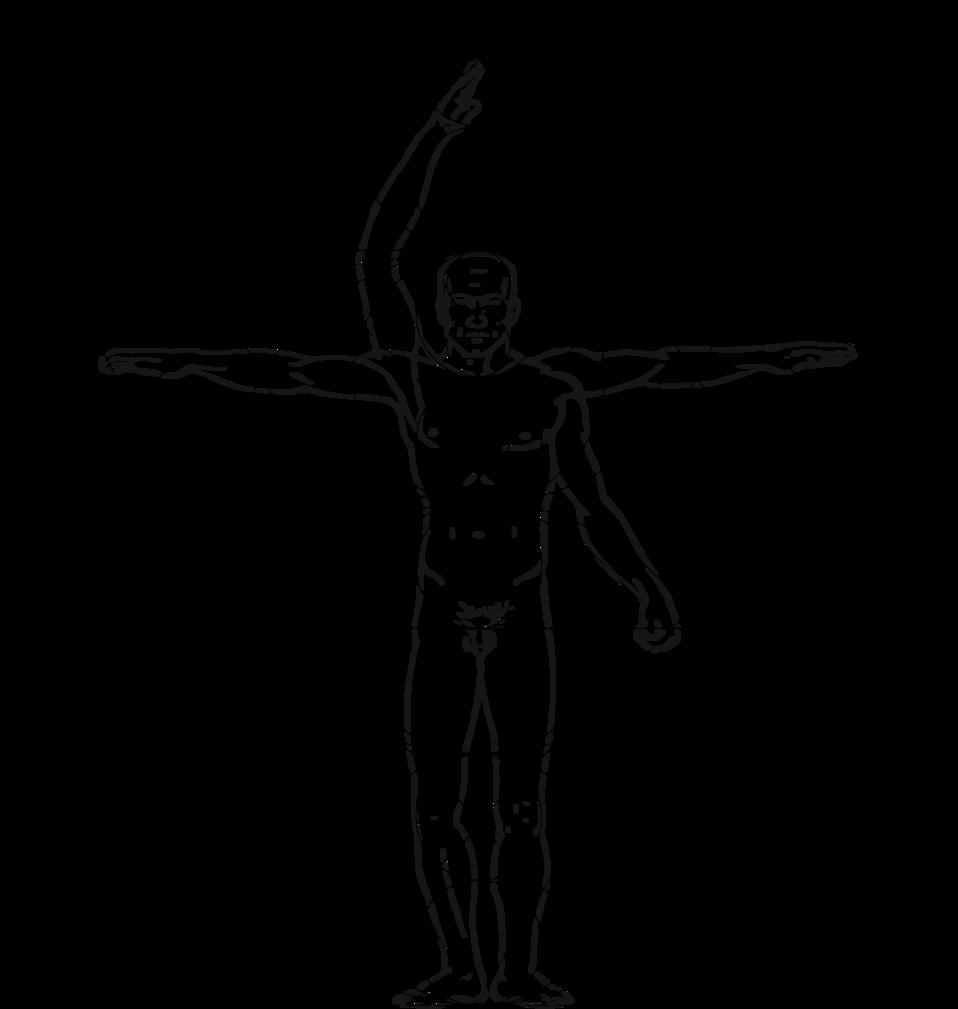 Vitruvian man style illustration