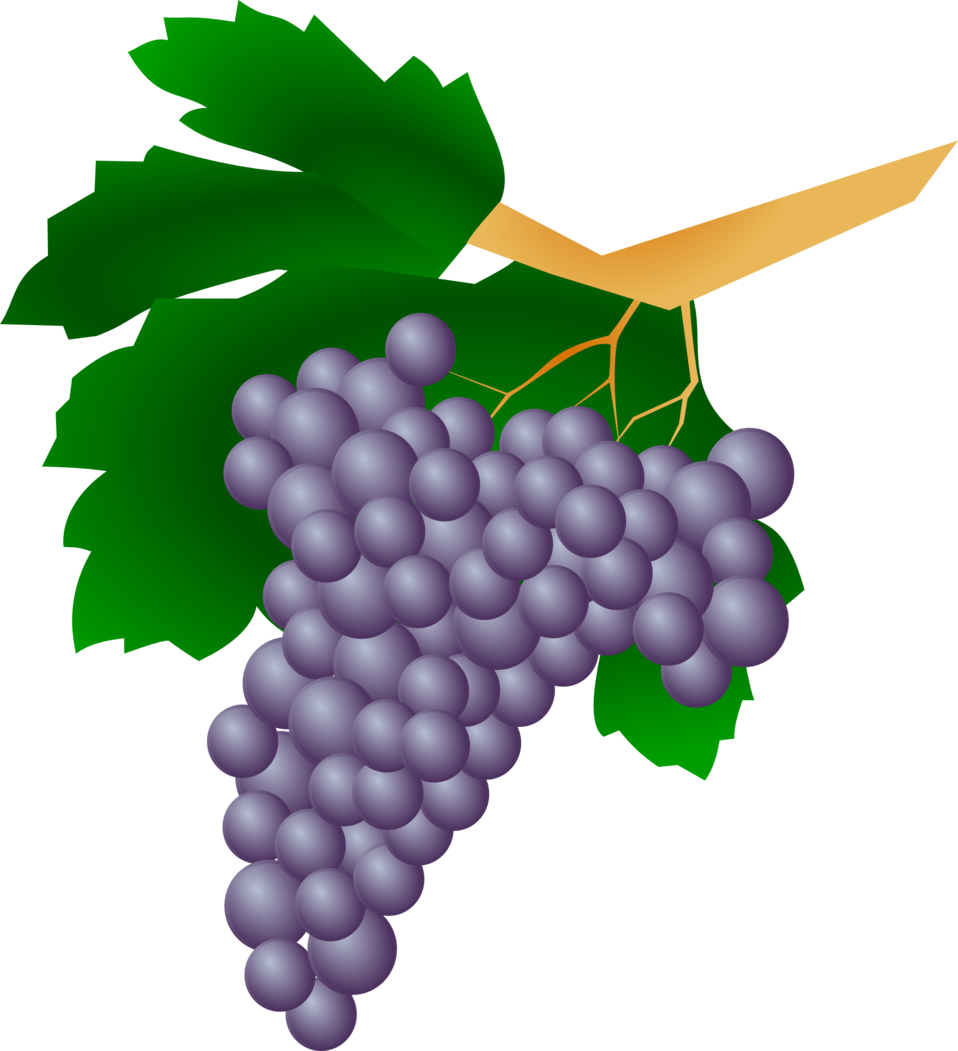 Grapes - Raisin