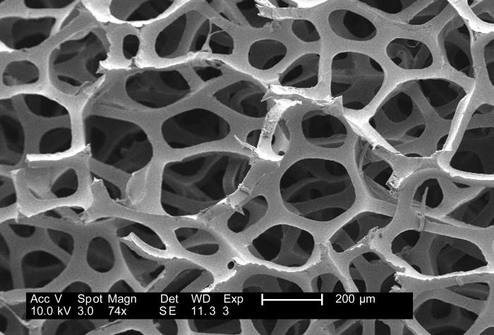 Under a low magnification of 74x, this 2007 scanning electron micrograph (SEM) depicted the fibrous configuration of a dry macrofoam sponge