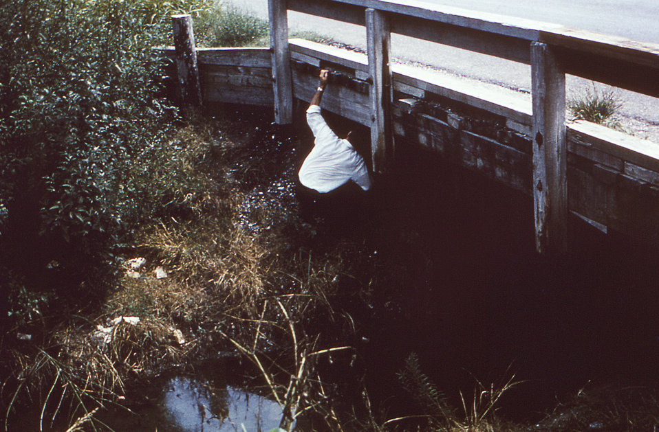 This public health employee was in the process of conducting a mosquito population study, and was collecting adult mosquitoes from beneath a