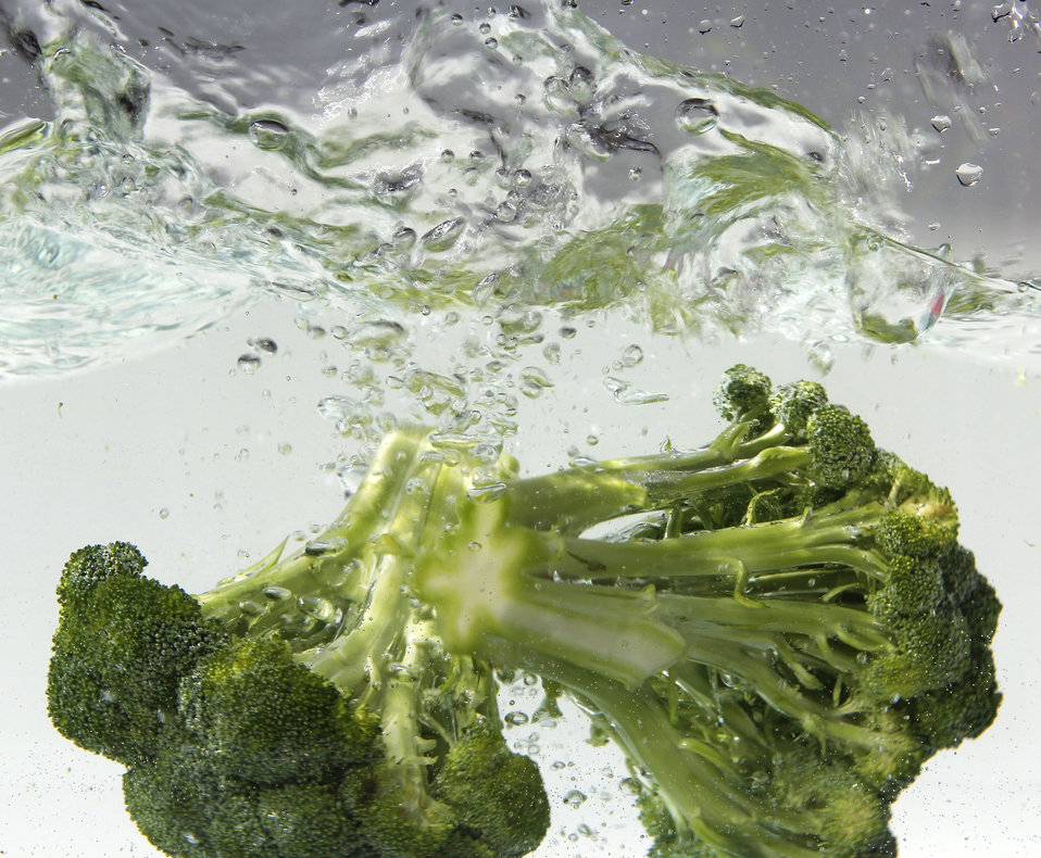 Dunked into a tub of clean water, these two fresh heads of green broccoli were undergoing a thorough cleansing prior to their addition to a