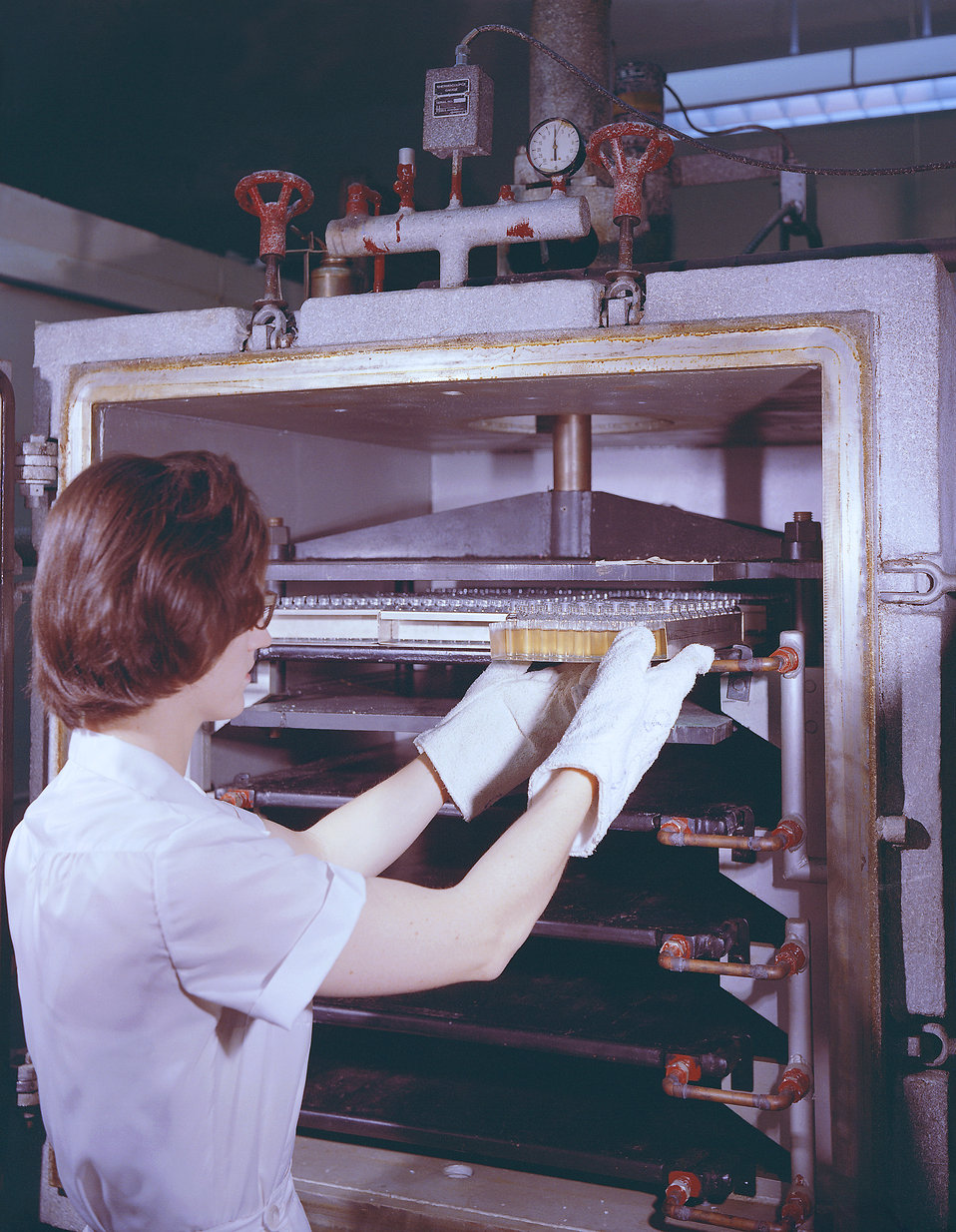 This historic 1963 photograph depicted laboratorian, Deanne Tolson, as she was preparing vials containing an unknown reagent, for lyophiliza