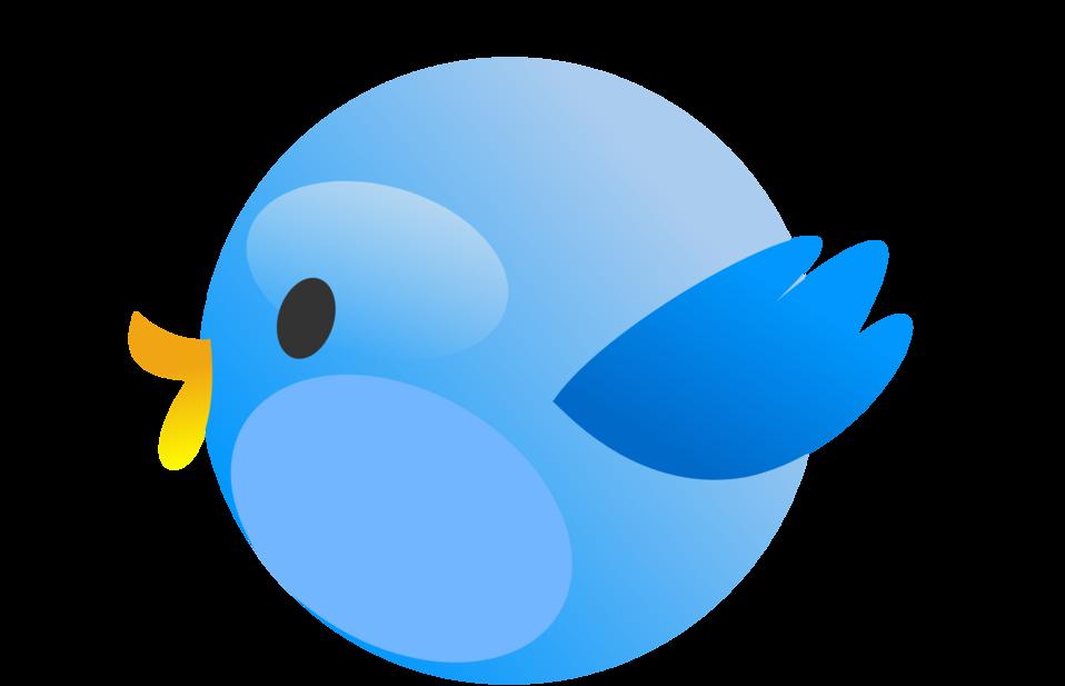 Cutie Bird