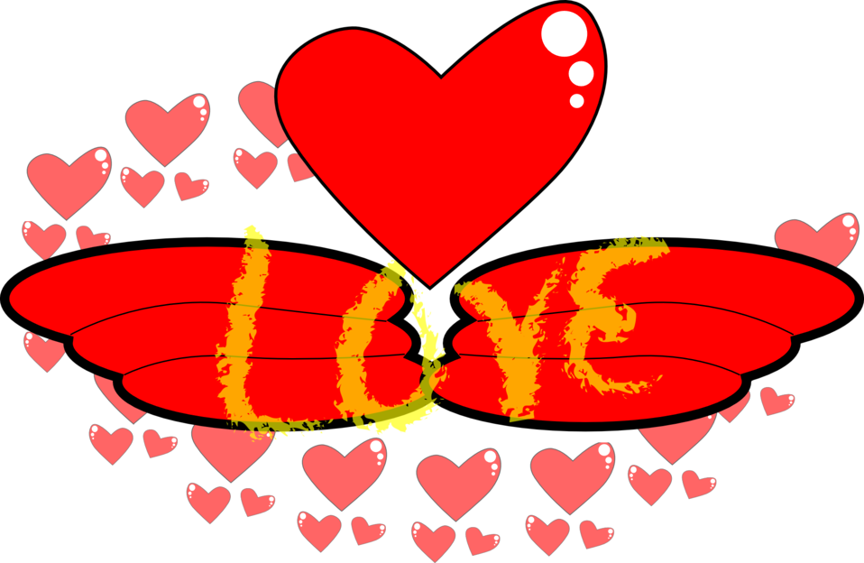 Love,Wing